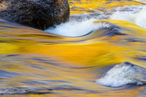 Fall colors reflected in the Swift River in New Hampshire by Danita Delimont