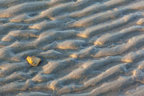 Patterns on the beach at Great Island Common in New Castle, ... von Danita Delimont