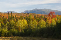 The northern Presidential in New Hampshire's White Mountains... von Danita Delimont