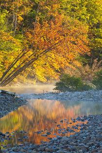 Fall colors reflect in the Saco River in Bartlett, New Hampshire von Danita Delimont