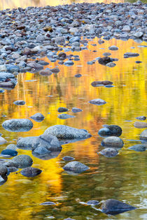 Fall colors reflect in the Saco River in Bartlett, New Hampshire by Danita Delimont