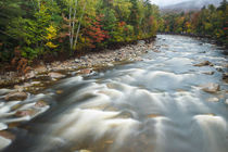 Fall foliage along the East Branch of the Pemigewasset River... by Danita Delimont