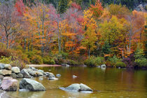 Autumn on Echo Lake, Franconia Notch State Park, New Hampshire, USA. by Danita Delimont