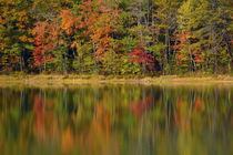 Reflected autumn colors at Echo Lake State Park, New Hampshire, USA. von Danita Delimont