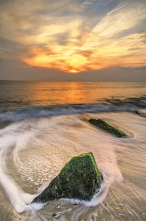 USA, New Jersey, Cape May by Danita Delimont