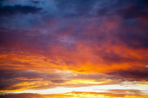 Colorful sunset blossoms across a New Mexico sky von Danita Delimont