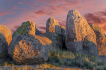 USA, New Mexico, City of Rocks State Park by Danita Delimont
