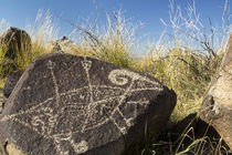 USA, New Mexico, Three Rivers Petroglyph Site by Danita Delimont