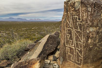 USA, New Mexico, Three Rivers Petroglyphs National Historic Site by Danita Delimont