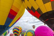 Albuquerque Balloon Fiesta von Danita Delimont