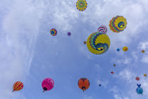 Albuquerque Balloon Fiesta by Danita Delimont