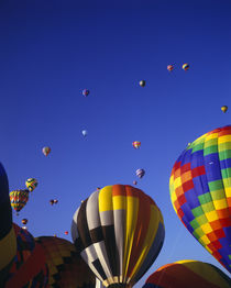 Hot Air Balloons aloft at the Albuquerque Balloon Festival, ... von Danita Delimont