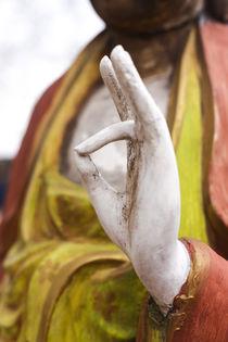 Buddha Statue, Santa Fe, New Mexico, USA. by Danita Delimont