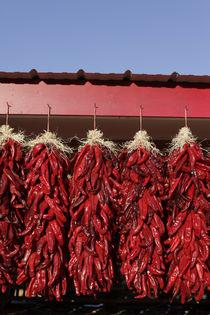 Chili peppers drying in the sun, Velarde, New Mexico, USA. von Danita Delimont