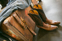 Cowboy snakeskin boots and an antique suitcase, Santa Fe, Ne... by Danita Delimont