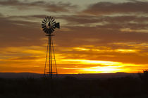 Sunrise, windmill, Cimarron, New Mexico, Hwy 64, by Danita Delimont