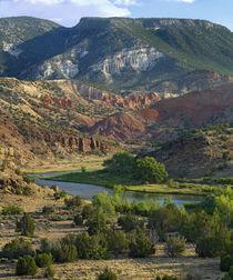 Rio Chama near Abiquiu, New Mexico, USA von Danita Delimont