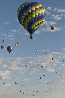 Mass ascension at the Albuquerque Hot Air Balloon Fiesta, New Mexico von Danita Delimont