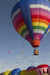 Mass ascension at the Albuquerque Hot Air Balloon Fiesta, New Mexico by Danita Delimont