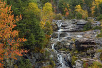 Autumn at Silver Cascade, Crawford Notch State Park, New Ham... by Danita Delimont