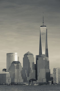 USA, New York, New York City, lower Manhattan and Freedom Tower, dusk von Danita Delimont