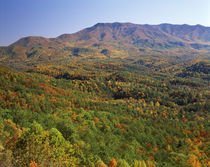 USA, North Carolina, Great Smoky Mountains National Park, Vi... von Danita Delimont