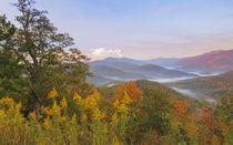 USA, North Carolina von Danita Delimont