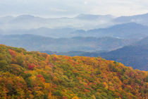 USA, North Carolina, Blue Ridge Parkway by Danita Delimont