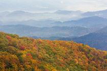USA, North Carolina, Blue Ridge Parkway von Danita Delimont