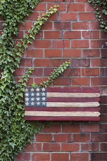 North Carolina, Linville, wooden US flag by Danita Delimont