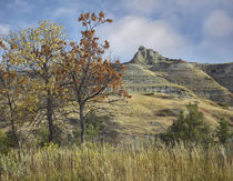 Autumn in the South Unit, Theodore Roosevelt National Park, ... by Danita Delimont