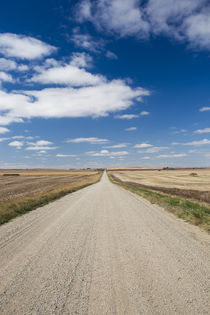 USA, North Dakota, Strasburg, country road by Danita Delimont