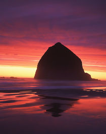 USA, Oregon, Cannon Beach, Haystack rock silhouetted on Cann... von Danita Delimont