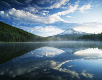 USA, Oregon, Mount Hood National Forest, Mount Hood Wilderne... by Danita Delimont