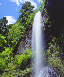 A waterfall in the mountains of Oregon by Danita Delimont