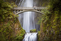 Couple on the footbridge below Multnomah Falls, Columbia Riv... by Danita Delimont