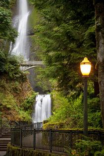 Walkway leading to Multnomah Falls along the Columbia River ... von Danita Delimont