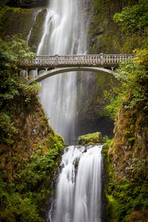 Multnomah Falls along the Columbia River Gorge, Oregon, USA. by Danita Delimont