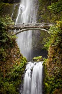 Multnomah Falls along the Columbia River Gorge, Oregon, USA. von Danita Delimont