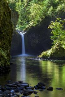 Punchbowl Falls along Eagle Creek Trail, Columbia River Gorg... by Danita Delimont