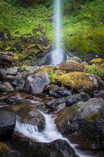 Elowah Falls in the Columbia River Gorge, Oregon USA von Danita Delimont