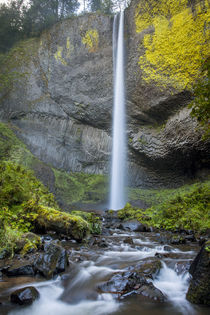 Latourell Falls in Guy W Talbot State Park in the Columbia R... by Danita Delimont