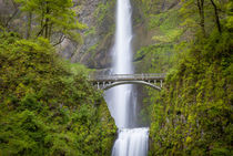 Multnomah Falls in the Columbia River Gorge near Portland, O... by Danita Delimont