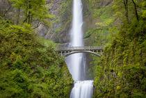 Multnomah Falls in the Columbia River Gorge near Portland, O... von Danita Delimont