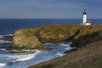 Yaquina Head Lighthouse, Newport, Oregon, USA by Danita Delimont