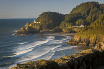 Heceta Head Lighthouse along the Oregon Coast, USA by Danita Delimont