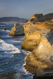 Rock formations along the coast at Cape Kiwanda, Oregon, USA von Danita Delimont