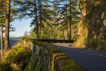 Tight curve along the Columbia River Scenic Highway, Cascade... von Danita Delimont