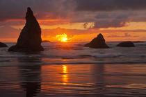 USA, Oregon, Bandon Beach von Danita Delimont