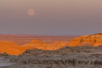 USA, South Dakota, Badlands National Park by Danita Delimont